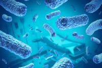 Инкубационный период серозного менингита